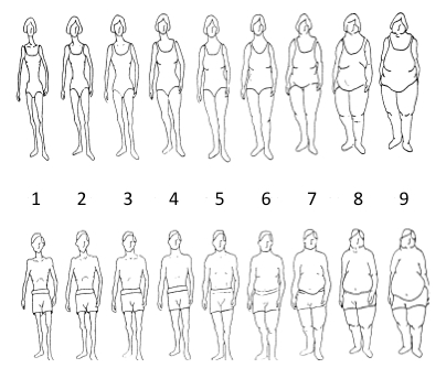 Test Your Body Image Satisfaction